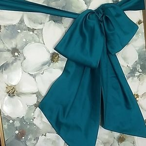 David's Bridal Wedding Oasis Teal Sash Belt